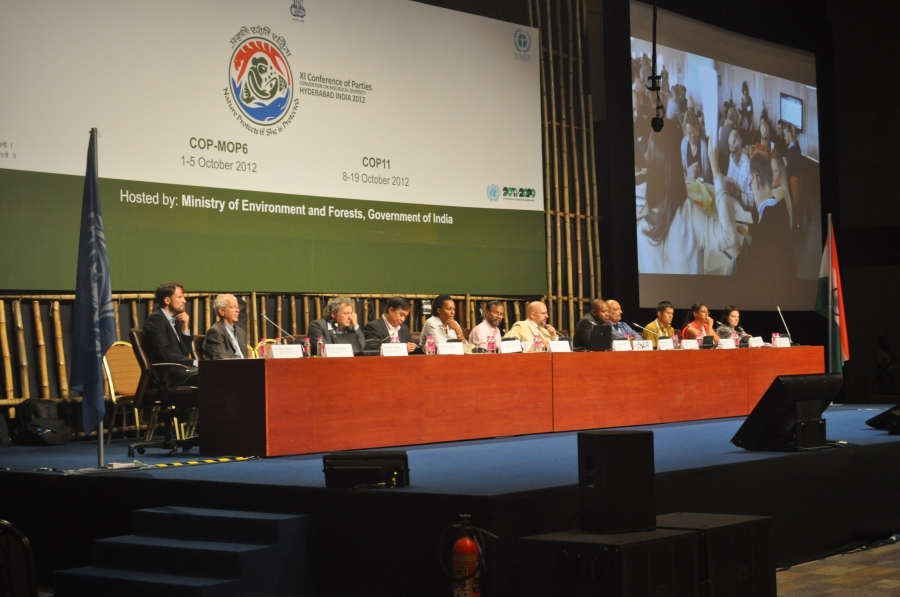 Results presented at the UN Conference of Parties (COP11) meeting in Hyderabad, India